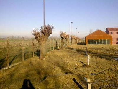 Mogliano Veneto-20120110-00086